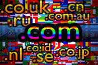 Mengenal dan Menggunakan Domain Dot Id (.id)